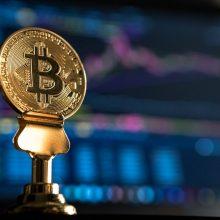 La fin de l'halving day effect : une chute logique du Bitcoin ?